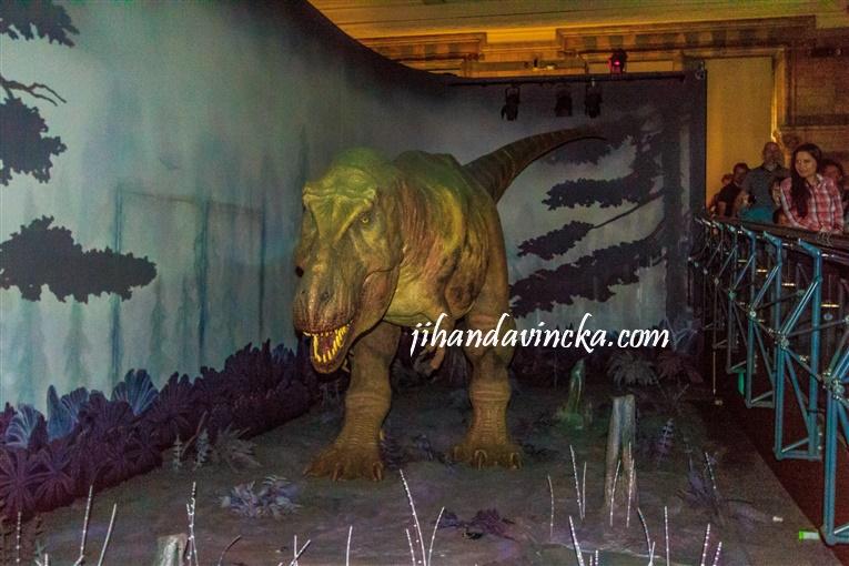 Natural History Museum London T-Rex