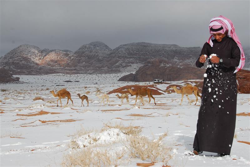 Salju di arab Gambar : reuters.com